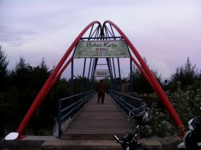 hutan kota BNI 2